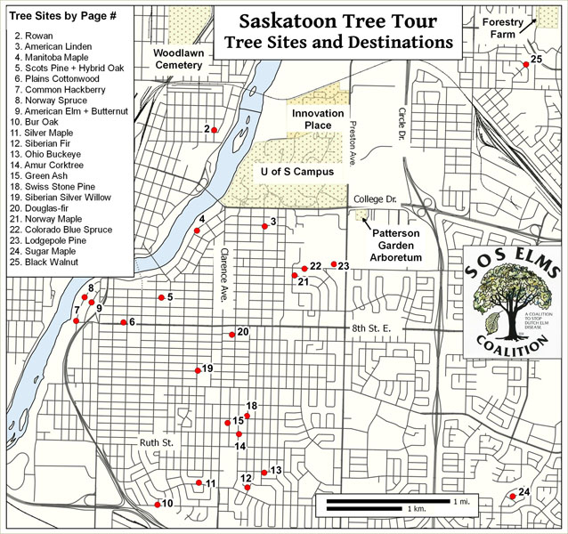Map of Tree Tour
